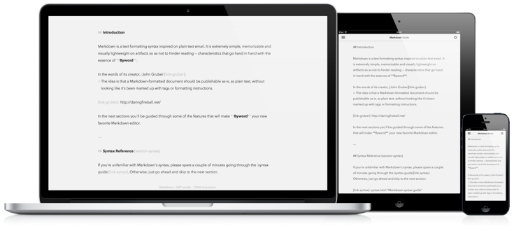 essay ipad text editor